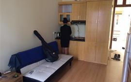 Cho thuê căn hộ chung cư khu Quán Thánh - Hàng Đậu